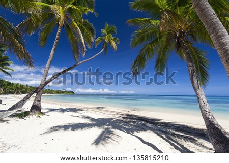 Tropical paradise on Fiji island - stock photo