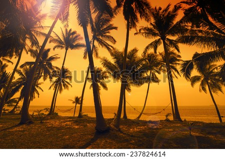 Tropical paradise: sunset at the seaside - dark silhouettes of palm trees, hammocks and amazing cloudy sky - stock photo