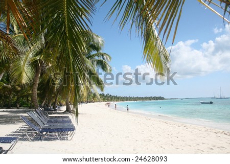 Tropical paradise: white sand beach island with tall palm trees in green caribbean ocean