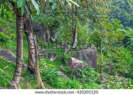 Tropical Park in Thailand. - stock photo