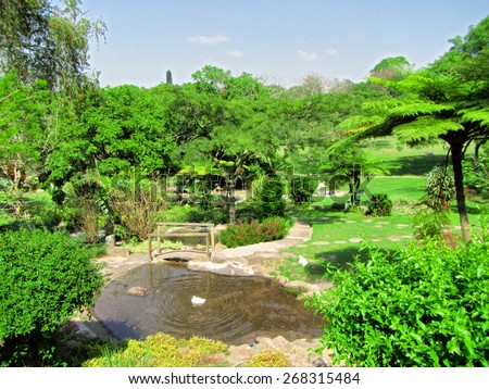 Tropical park with small pond. Shot in Durban, South Africa.  - stock photo