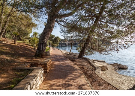 Tropical path under tropical woods - stock photo