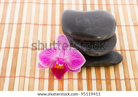 Tropical pink orchid with hot stones on bamboo
