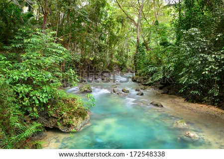 Tropical rain forest with a clean river shot long exposure. Philippines, Asia. - stock photo