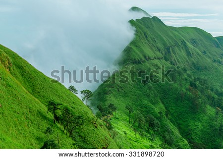 Tropical rainforest, Khao Chang Puek, Thong Pha Phum National Park, Kanchanaburi, Thailand - stock photo