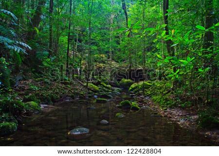 Tropical Rainforest Landscape, Thailand, Asia - stock photo