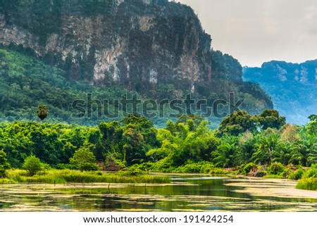 Tropical rainforest Phuket mountain range,Thailand - stock photo