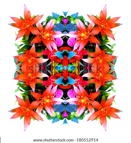 Tropical reflected flowers - stock photo