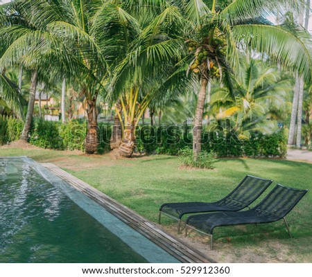 Tropical resort forest landscape with the blue sunny sky. Modern swimming pool and lounge chairs. Vacation holiday concept. Travel inspiration. Copy space.