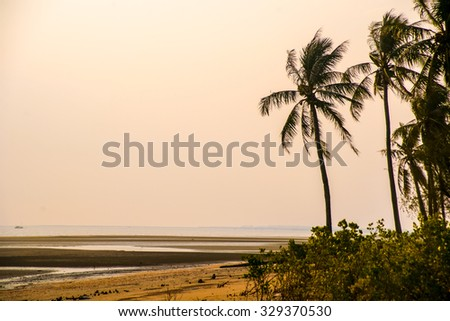 tropical resort with beach and palms at sunset, beautiful sky with clouds