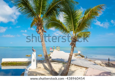 Tropical resort with chaise longs and hammocks near palms on sandy beach, Key West, Florida, USA - stock photo