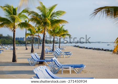 Tropical resort with chaise longs arranged in a row near palms on sandy beach, Key West, Florida, USA
