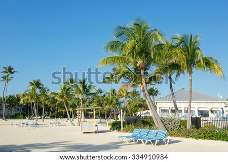 Tropical resort with chaise longs arranged in a row near palms on sandy beach, Key West, Florida, USA - stock photo