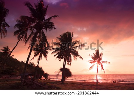 Tropical romantic paradise: sunset at the seaside - dark silhouettes of palm trees and amazing cloudy sky - stock photo