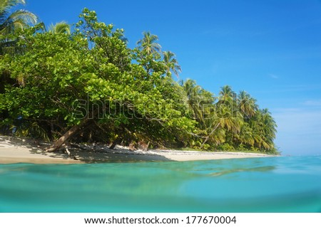 Tropical sandy beach with beautiful vegetation, view from the water surface, Caribbean sea, Costa Rica - stock photo