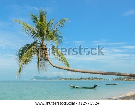 Tropical sea beach with coconut palm tree and long-tail boat in Thailand
