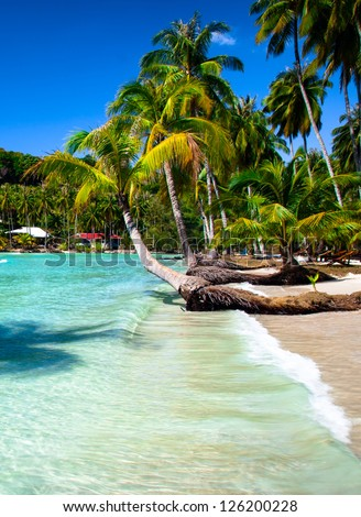 Tropical seashore with palm trees and wave on sandy beach - stock photo
