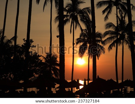 Tropical setting sun against palm-trees and beach area - stock photo