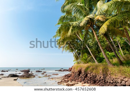 Tropical shore of southern India. Beautiful palm trees and calm ocean.