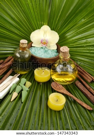 tropical spa and palm leaf texture