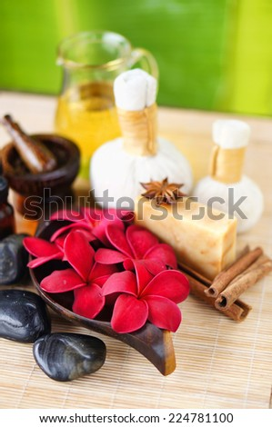 tropical spa concept - stock photo