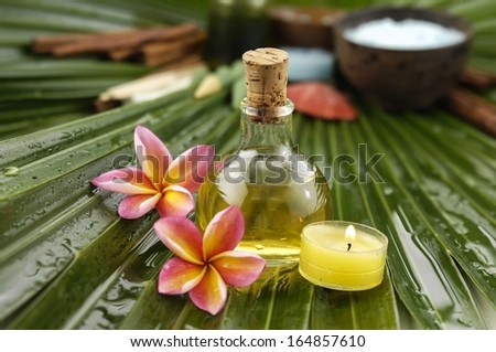 tropical spa on wet palm leaf - stock photo