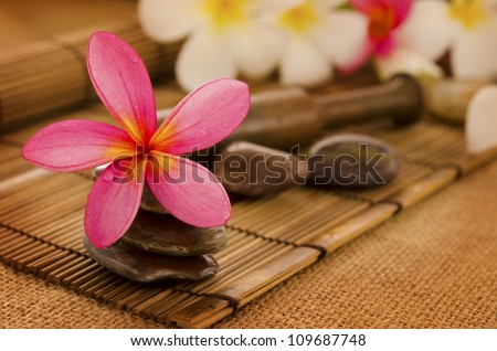 Tropical spa with Frangipani flowers. Low lighting, suitable for spa related theme. - stock photo