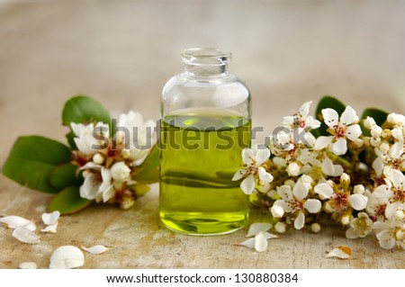 Tropical spring flower with massage oil