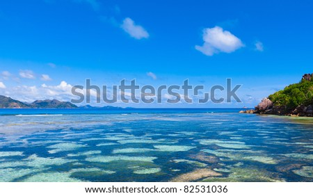 Tropical Summer Waves - stock photo
