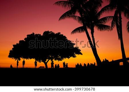 Tropical Sunset Golden Glow - stock photo