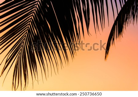 Tropical sunset over sea with palm trees, Thailand. Retro vintage filtered. - stock photo