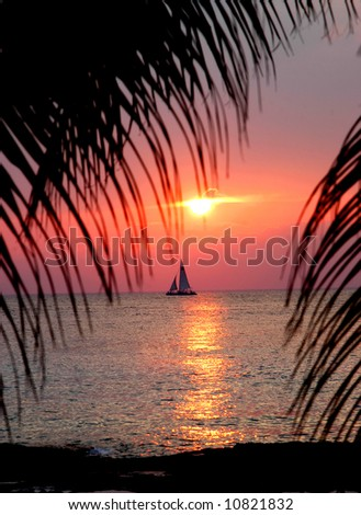 Tropical sunset with palm fronds framing a sailing boat that ha just crossed the suns reflection on the water. - stock photo