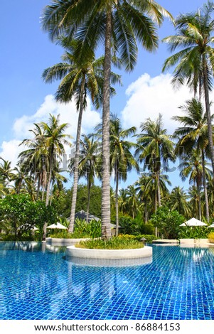 Tropical Swimming pool surrounded by pam trees, coconut trees - stock photo