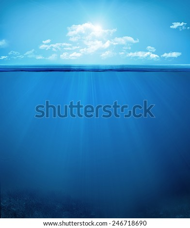 tropical underwater scene - stock photo