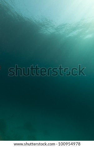 Tropical underwater scenery in the Red Sea - stock photo