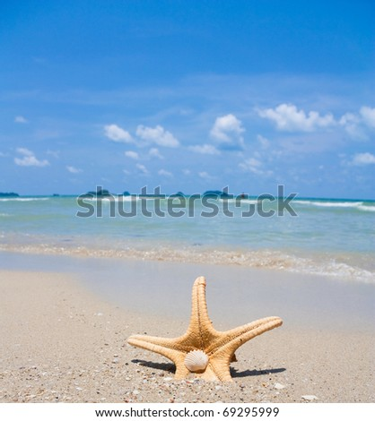 tropical view - stock photo