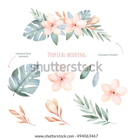 Tropical Wedding floral set.Beautiful soft floral collection with leaves and flowers(tropical leaves,plumeria).Watercolor individual elements+1 pastel colored bouquet.Perfect for wedding,invitations.