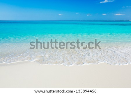 Tropical White Sand Beach and Sea