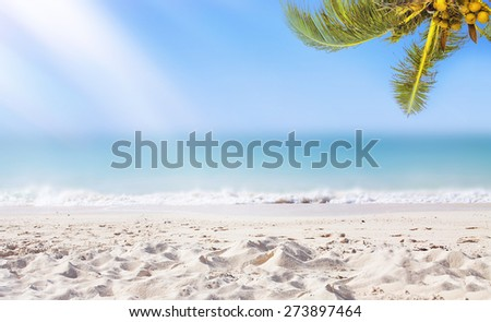 Tropical white sand beach background. Sunshine, coconut palm tree and ocean. Panoramic view. - stock photo