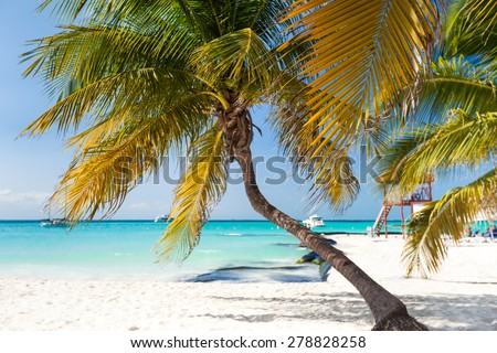 Tropical white sand beach with coconut palm trees, seaview. Mexico, Isla Mujeres.