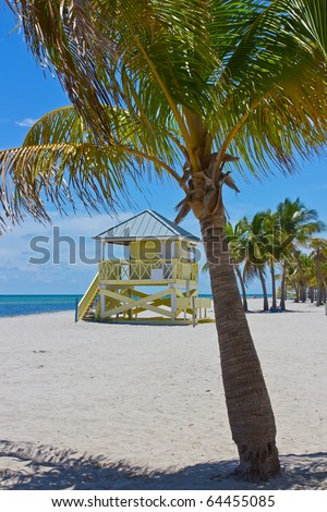 tropical white sand beach with palm trees and lifegard tower