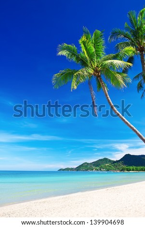 Tropical white sand with palm trees at Chaweng Beach. Koh Samui, Thailand - stock photo