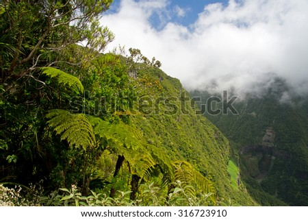Trou de fer waterfall on Reunion Island National Park