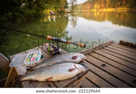 trout area fishing. blurred background - stock photo