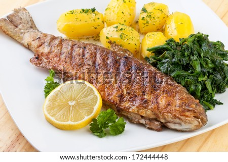 Trout Fried - stock photo