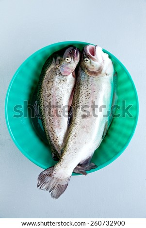 trout raw fish in the bowl - stock photo