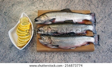 Trout ready for processing kitchen - stock photo