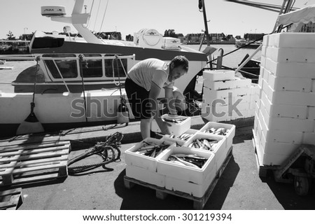 TROUVILLE-SUR-MER, FRANCE - JULY 10, 2015: Two young fishermen unload boxes with fresh catch from fishing boat. Trouville-sur-Mer and nearby Deauville are popular summer resorts in Normandy region.