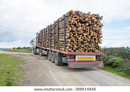 Truck with load of tree trunks of eucalyptus - stock photo