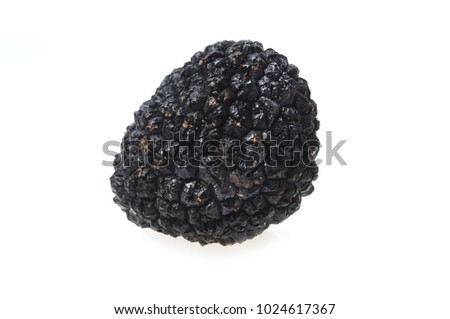 truffle on a white background